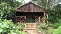 Kibale Forest Lodge