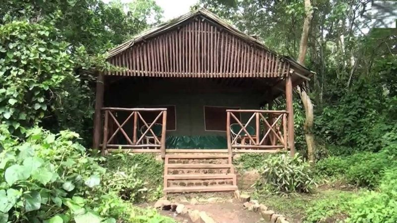 Kibale Forest Lodge