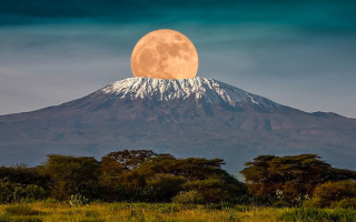 Mount Kilimajaro National Park