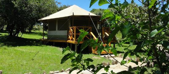 Ol Moran tented camp