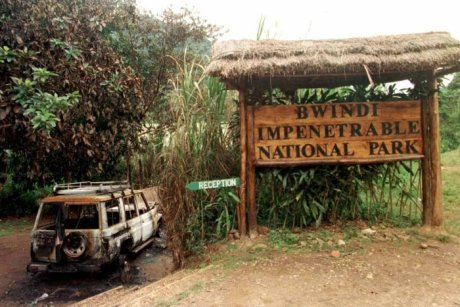 Bwindi impenetrable national park massacre