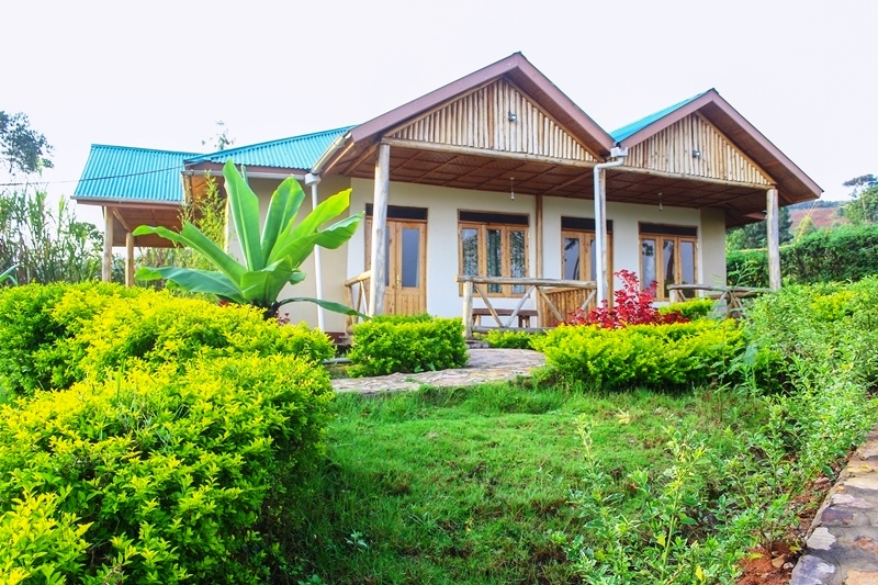 Rushaga Gorilla Haven Lodge