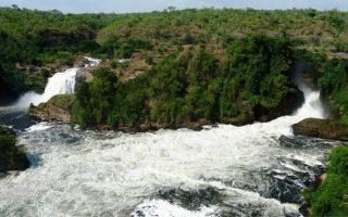 5 Days Murchison Falls and Chimpanzee Trekking Safari