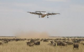 4 Days Fly-in Masai Mara Wildlife Safari