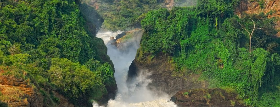 How to Get to Murchison Falls National Park