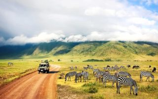 7 Days Kenya and Tanzania Wildlife Safari