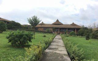 Gorilla Solution Lodge