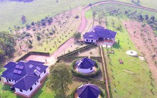 Crested Crane Bwindi Hotel