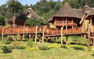Trackers Safari Lodge